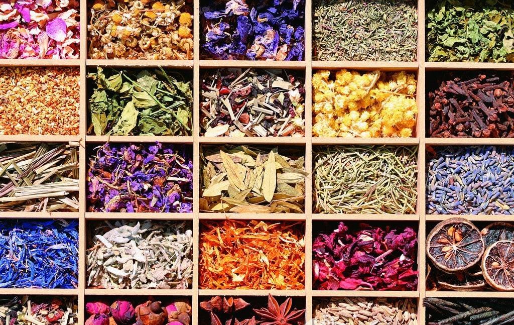 how to become a traditional chinese medicine practitioner