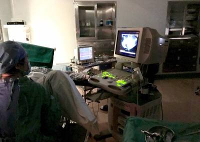 IVF Embryo transfer Dr. Richard Zeng